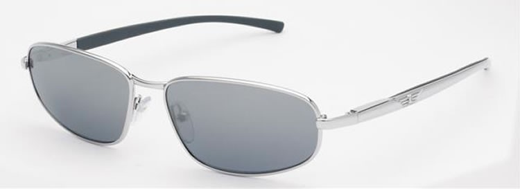 Police Sunglasses 8308 579X